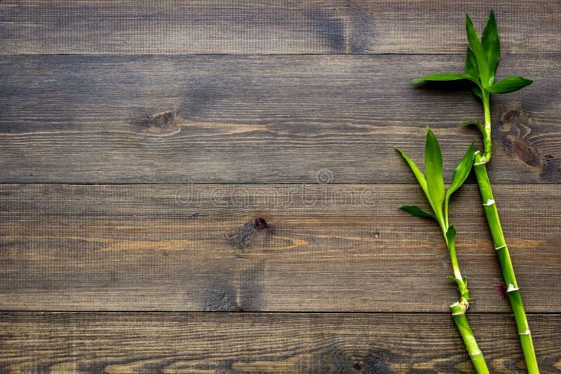 亚洲背景 汉语,日本背景 在黑暗的木背景顶视图空间的竹分支文本的 免版税库存照片