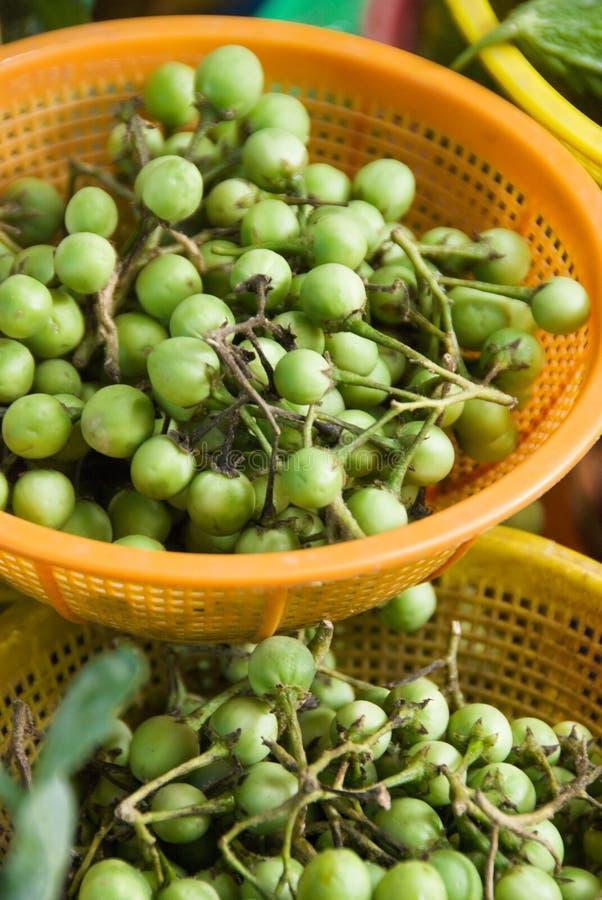 亚洲草本蔬菜 免版税图库摄影