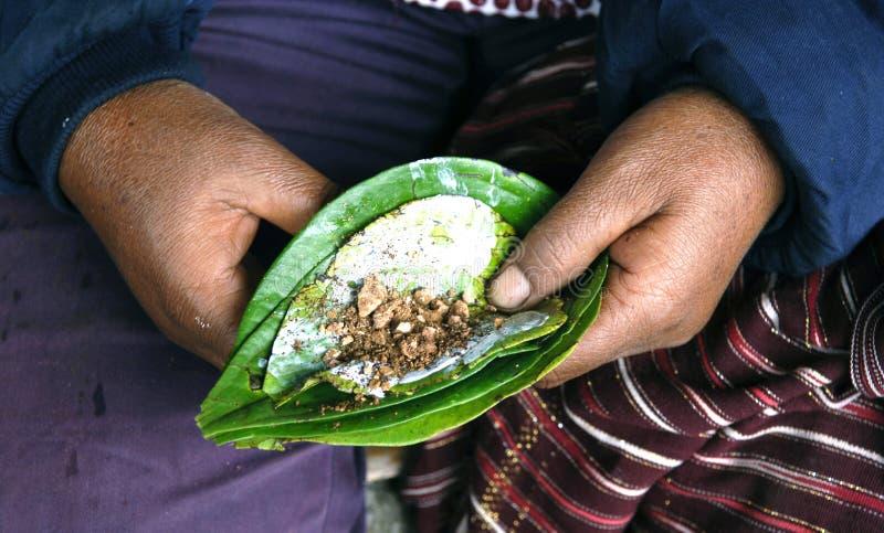 亚洲蒋酱之叶印度尼西亚准备 免版税库存图片