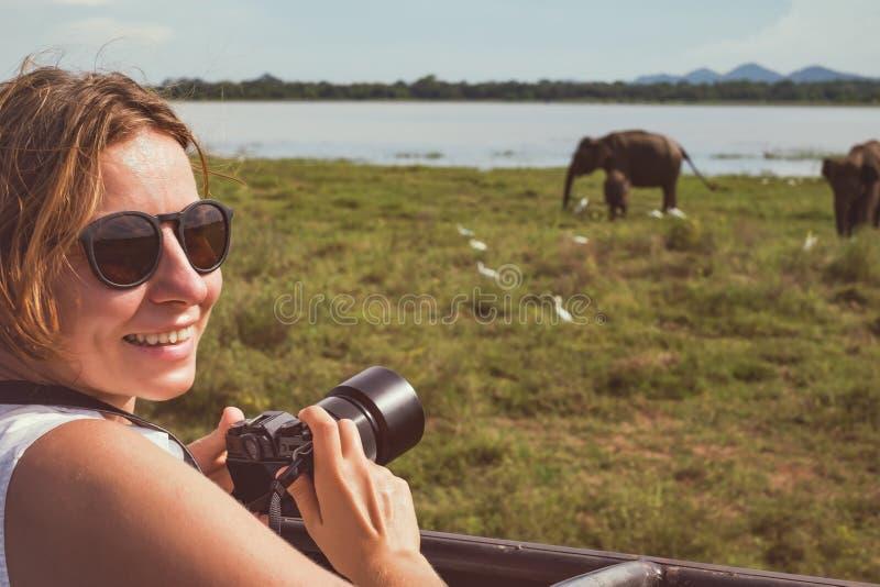 亚洲野生生物徒步旅行队的妇女 拍大象牧群的照片夫人与她的照相机的 库存图片