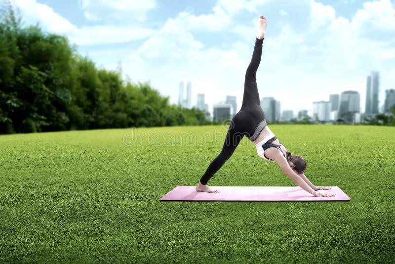 亚裔健康在地毯的女子实践的瑜伽在绿草领域 免版税图库摄影