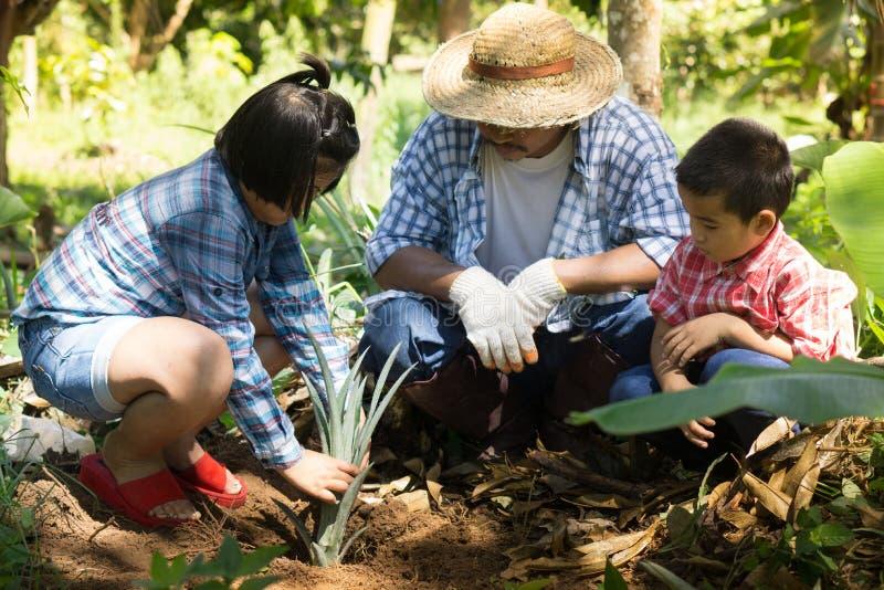 亚裔农夫教他们的孩子喜欢有耐心和努力的植物 免版税库存图片