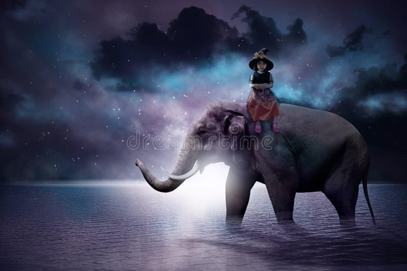 亚裔女孩坐大象 库存照片
