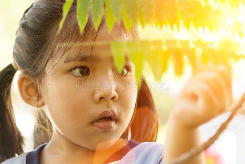 亚裔女孩的意想不到的面孔学会生态 免版税库存照片
