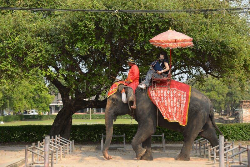 亚裔游人坐大象 免版税图库摄影