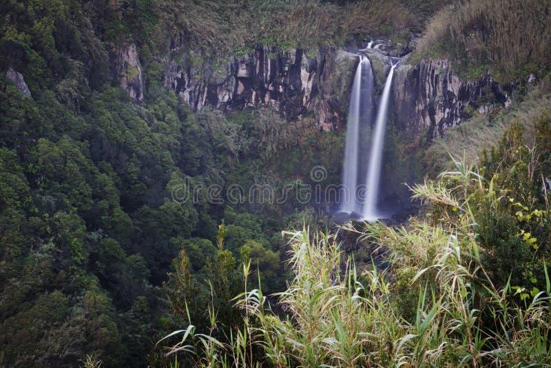 亚速尔群岛:瀑布 免版税库存照片