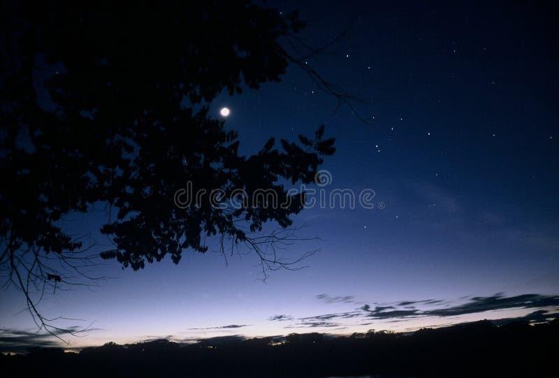 Download 亚马逊盆地黄昏 库存照片. 图片 包括有 蓝色, forrest, 干净, 微明, 薄暮, 天空, 星形, 黄昏 - 52596