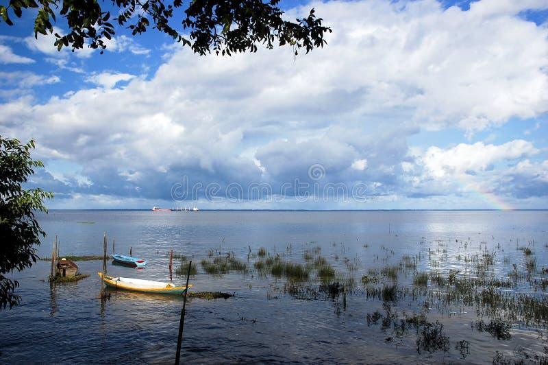 亚马逊Delta河 免版税库存照片