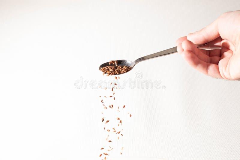 亚麻籽极少数从匙子倒下 图库摄影