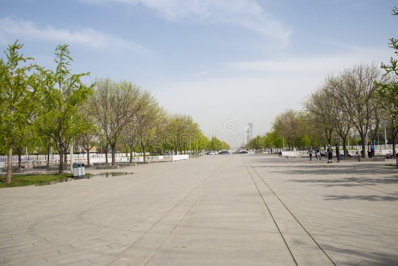 亚洲中国,北京,奥林匹克公园,风景大道 免版税库存图片