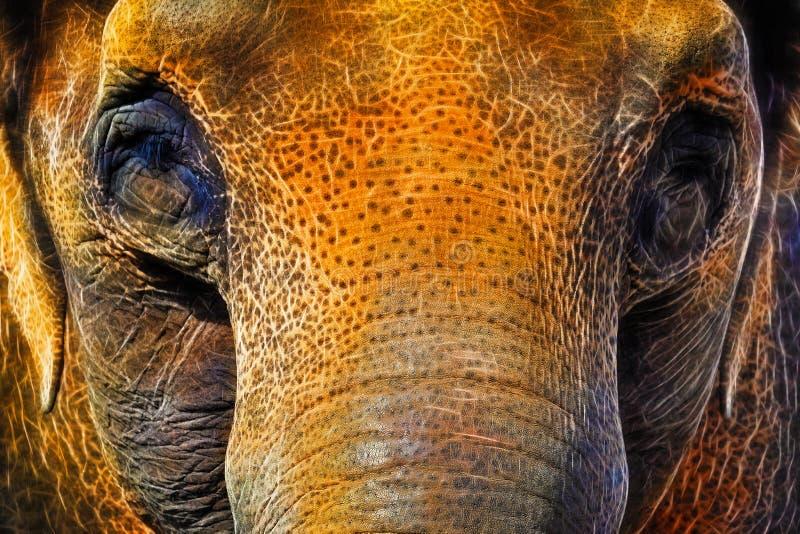 亚洲大象霓虹特技效果 免版税库存照片