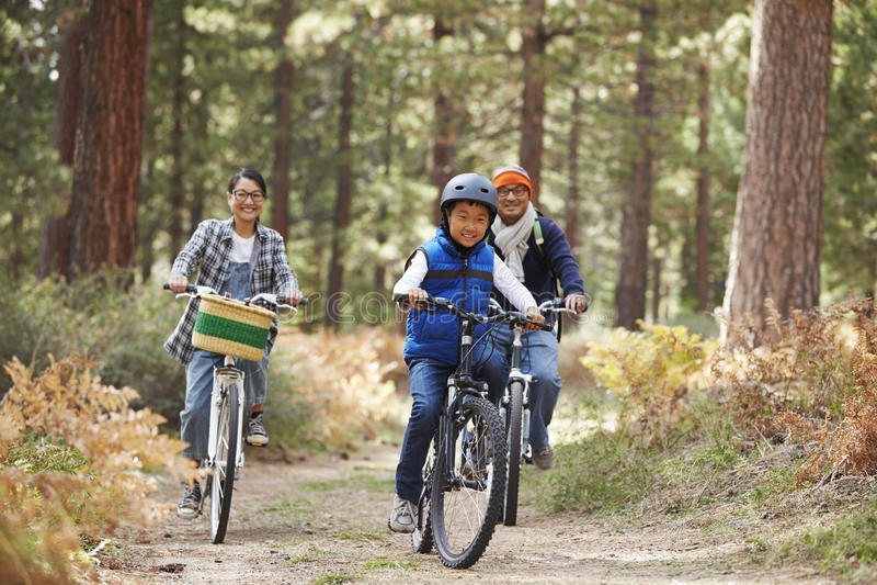 亚洲夫妇和儿子循环在森林里的,正面图 库存照片