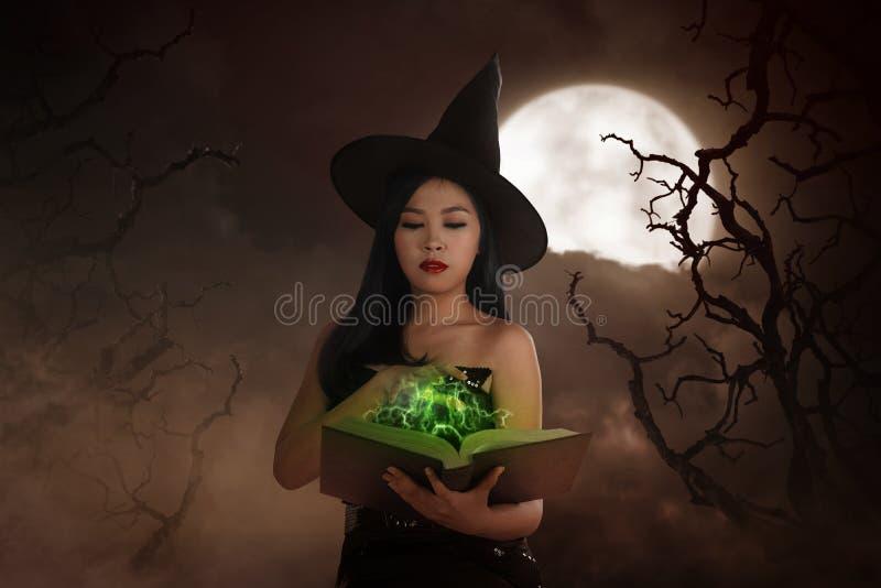 亚洲巫术师妇女藏品咒语书 皇族释放例证