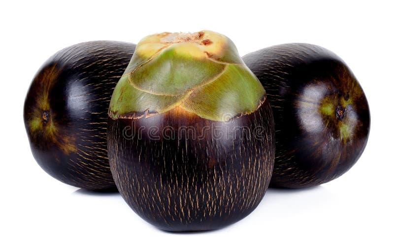 亚洲扇叶树头榈棕榈,棕榈汁,桄榔 图库摄影