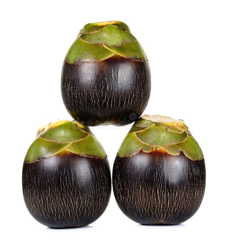 亚洲扇叶树头榈棕榈,棕榈汁 免版税库存照片