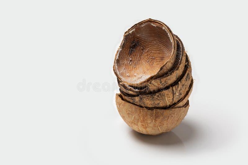 亚洲椰子空的壳关闭,被隔绝的演播室摄影 库存照片
