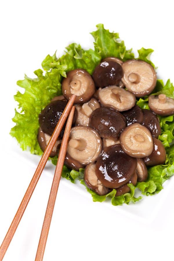 亚洲蘑菇 库存照片