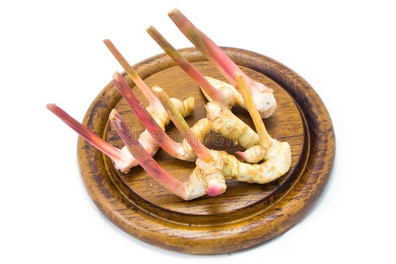 亚洲高良姜(姜)在被隔绝的斩肉板 免版税库存图片