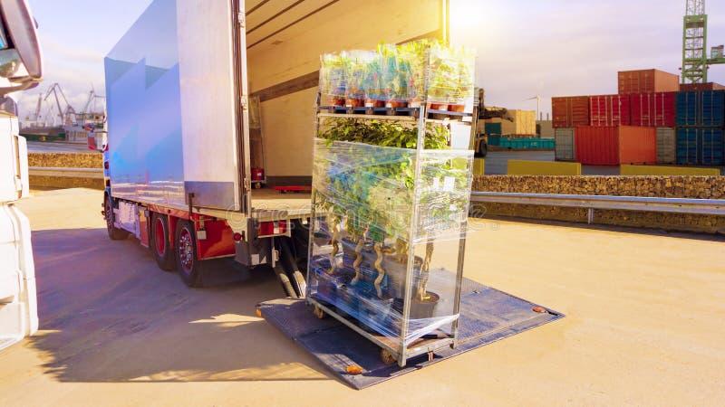 交付用卡车 卡车后勤学大厦 交付用卡车 免版税库存图片