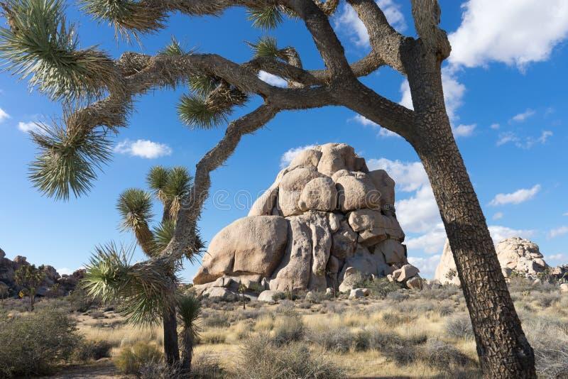 交叉点岩石在约书亚树 免版税库存图片