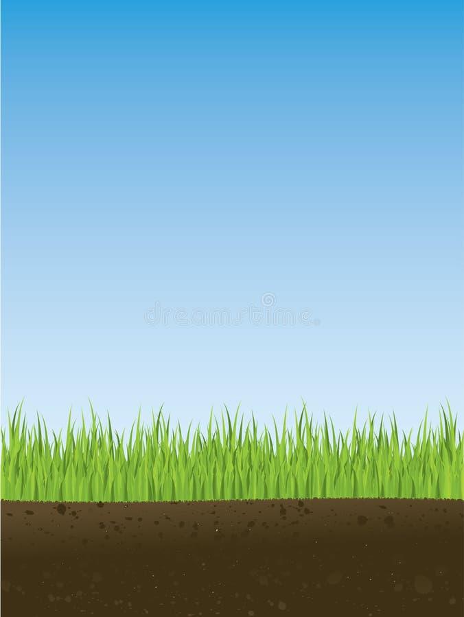 交叉草部分春天 向量例证