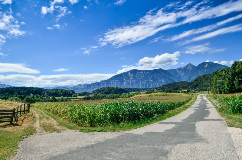 交叉路在阿尔卑斯 图库摄影
