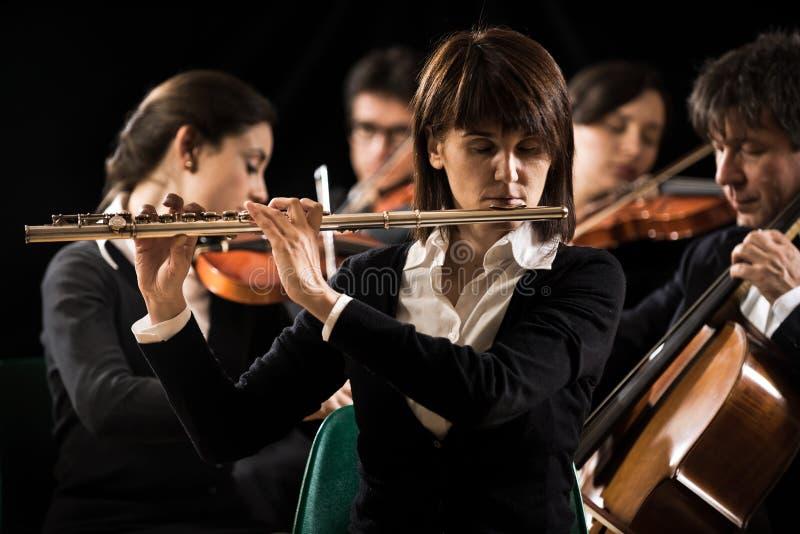 交响乐团表现:长笛演奏家特写镜头 免版税库存照片