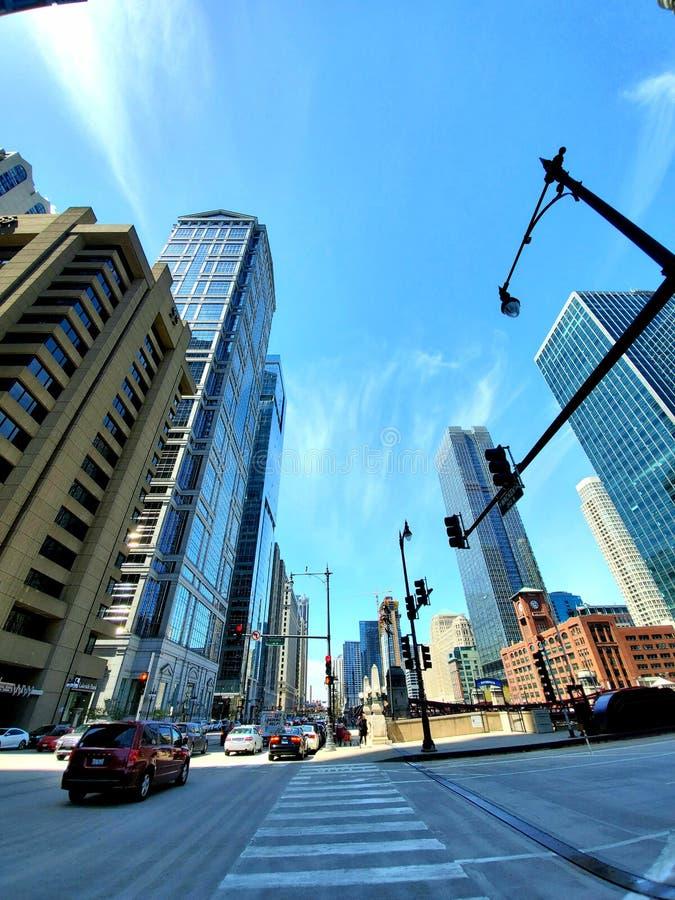 交通信号灯和大厦 库存照片