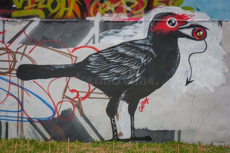 交通标志袜商车道墨尔本 在墙壁上的鸟绘画 库存图片