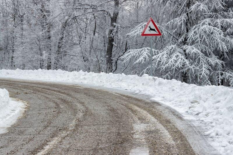 交通标志警告横渡2的鹿 免版税库存照片