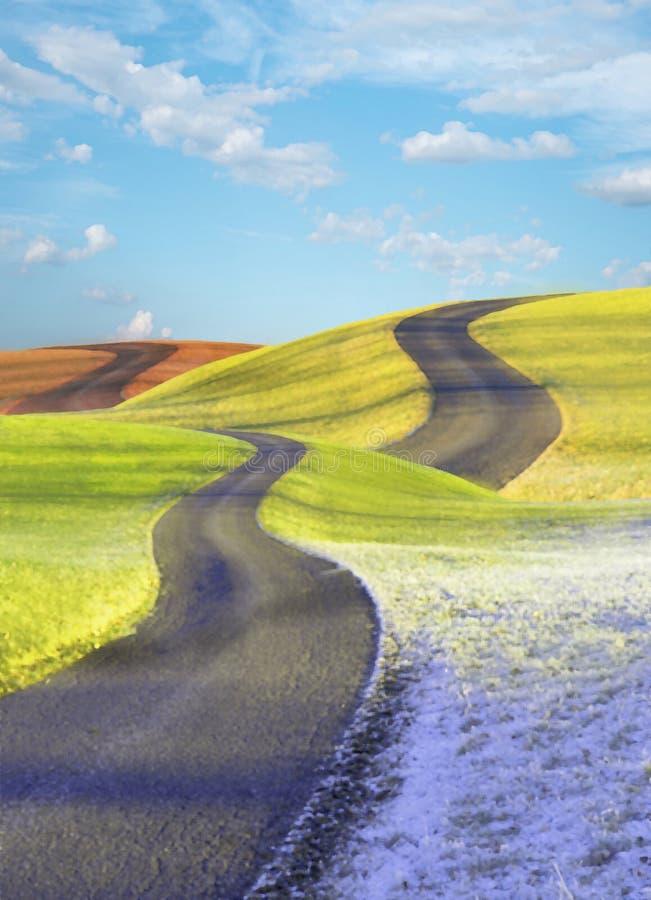 交错的路,四个季节风景 库存图片