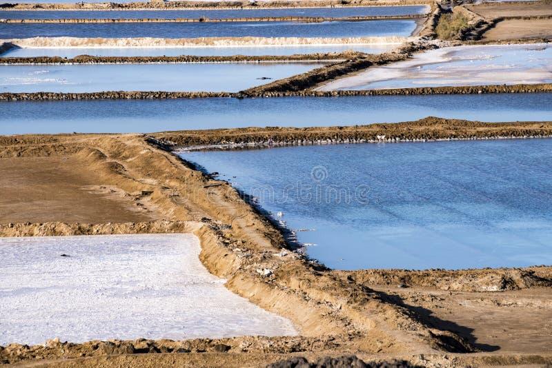 亦称盐湖Afrera湖Afdera或Giulietti或者Egogi,在远处Danakil,埃塞俄比亚 免版税图库摄影