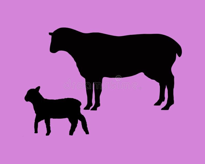 产小羊绵羊 库存例证
