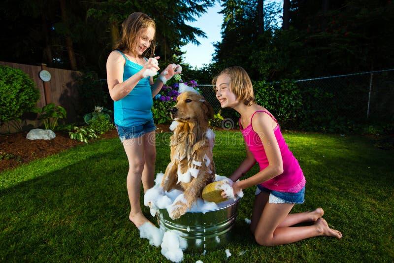 产生他们的狗浴的二个女孩 免版税图库摄影
