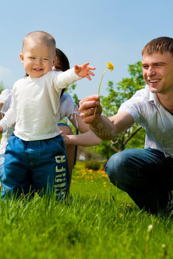 产生他的儿子的父亲花 库存照片