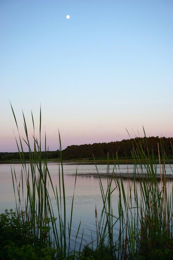 亨廷顿海滩国家公园 库存照片