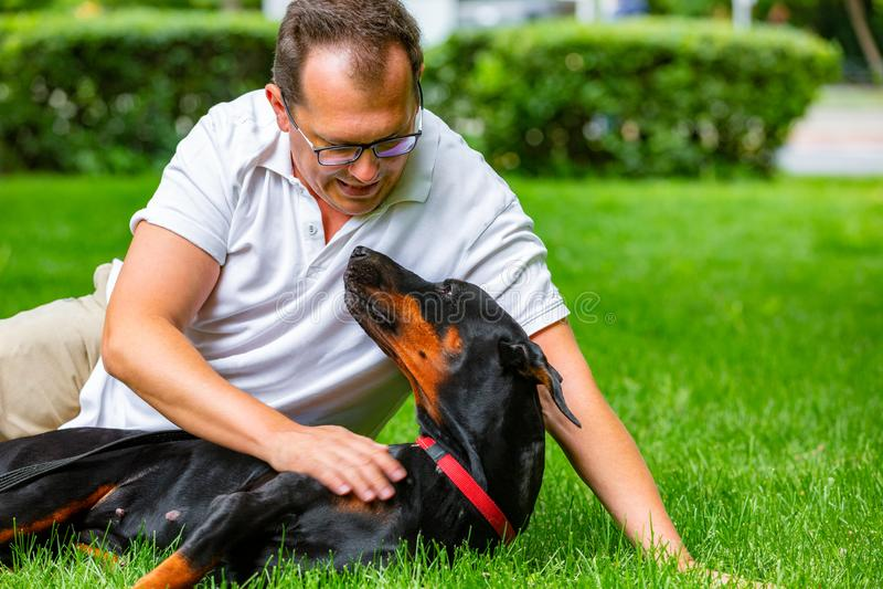 享受一个晴天的年轻人在有他的狗的公园 Dobermann 他们演奏一起说谎在绿草 图库摄影