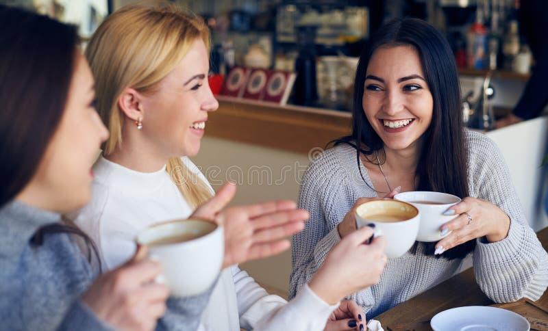 享受交谈和喝咖啡的朋友在咖啡馆 库存图片
