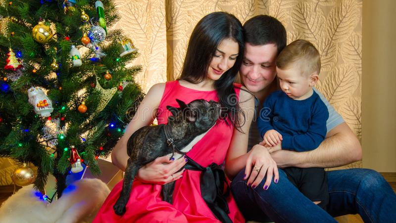 享受使用与新的小狗的美丽的年轻家庭在圣诞节 免版税库存照片