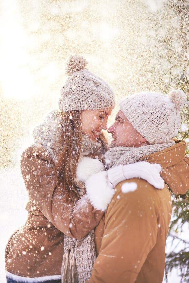 享受冬天 库存图片