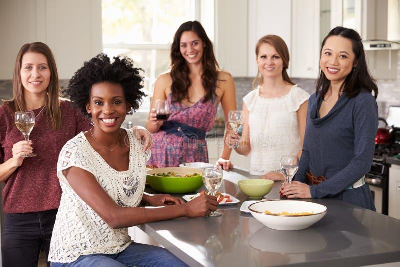享受前晚餐饮料的女性朋友画象  免版税库存图片
