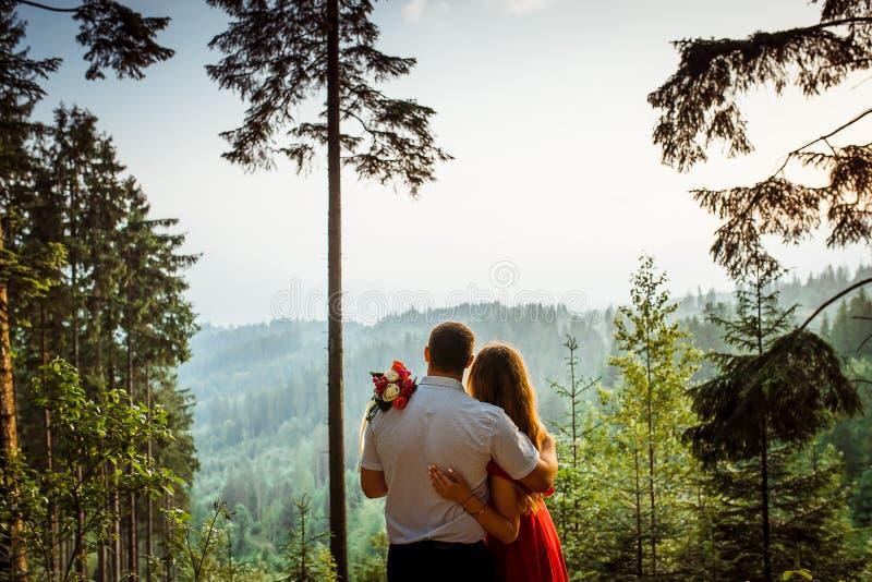 享受在山的俏丽的拥抱的夫妇的特写镜头后面视图日落 没有表面 浪漫纵向 免版税库存照片