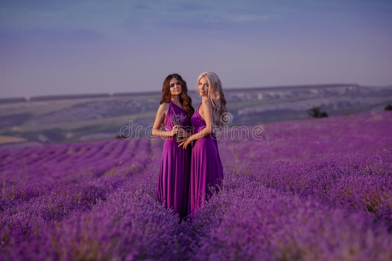 享受在淡紫色领域的无忧无虑的两美女日落 和谐 有吸引力白肤金发和深色与长的卷曲头发 免版税库存图片
