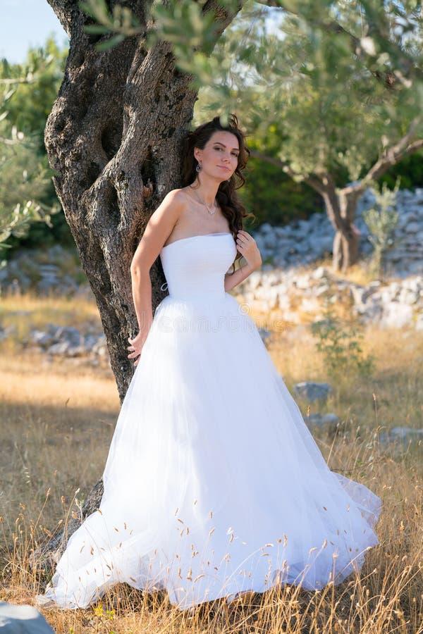 享受她的时间外面在橄榄树的可爱的少妇 免版税库存图片