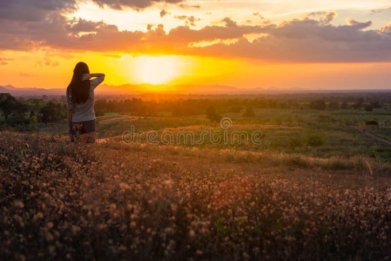 享受幸福、自由和自然的愉快的自由的妇女 免版税库存图片