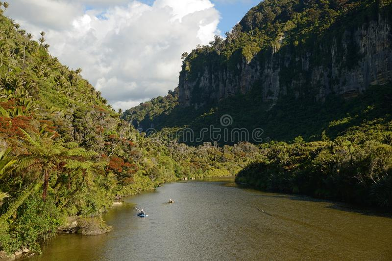 享受新西兰夏天 免版税库存照片