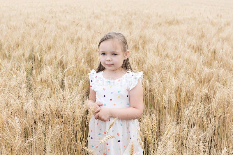 享受本质 在金黄麦田的小女孩逗留 库存图片