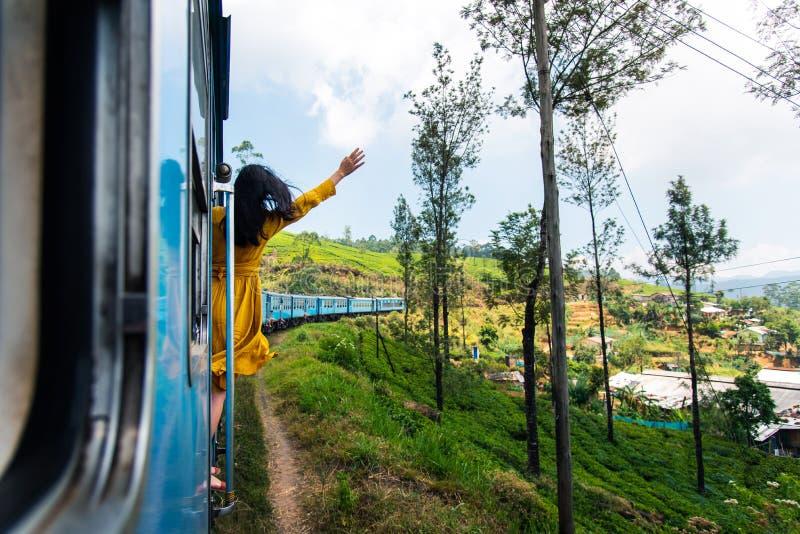 享受火车乘驾的妇女通过斯里兰卡茶园 免版税库存图片