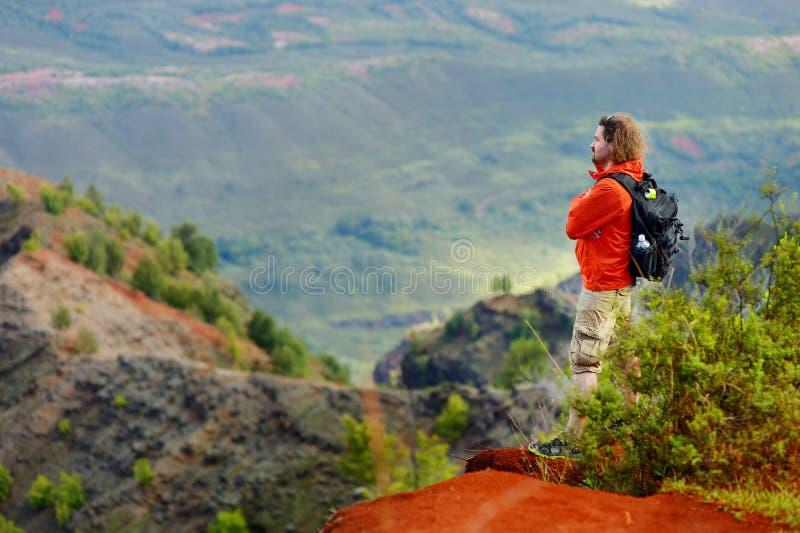 享受看法的年轻人入Waimea峡谷 图库摄影