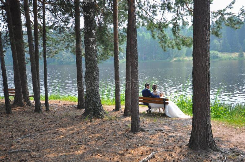 享受美好的风景的新婚佳偶坐长凳在湖附近在夏天 库存照片